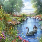 castorland-puzzel-1500-stuks-black-swans-andres-orpinas-151042