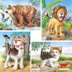 castorland-puzzel-8-stuks-dieren-04041