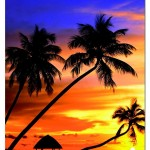 educa-puzzel-1000-stuks-sunset-in-the-maldives-14440