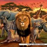 ravensburger-puzzel-500-stuks-savanne-in-het-avondrood-141777