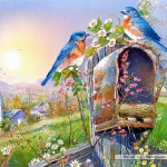 castorland-puzzel-1000-stuks-birds-and-mailbox-andres-orpinas-102662