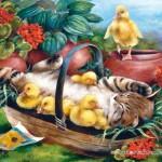 castorland-puzzel-1000-stuks-playtime-102877