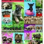 educa-puzzel-1000-stuks-keith-kimberlin-puppy-collage-14441