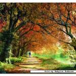 educa-puzzel-2000-stuks-forever-autumn-14819