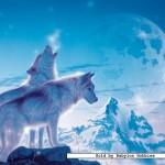 ravensburger-puzzel-1500-stuks-huilende-wolven-162086