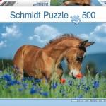 schmidt-puzzel-500-stuks-welsh-pony-57359